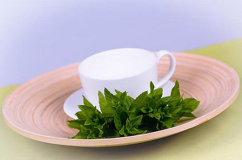 beneficios-do-cha-de-menta-2.ESPemporium