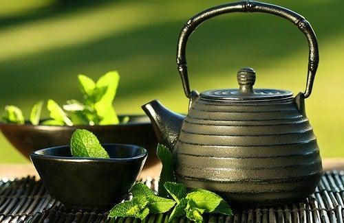 Maravilhosos benefícios do chá de menta
