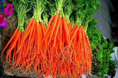 As vantagens em comer cenoura