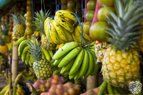 Alimentos saudáveis que saciam a fome