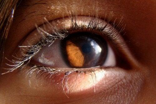 Conselhos para melhorar a saúde da visão