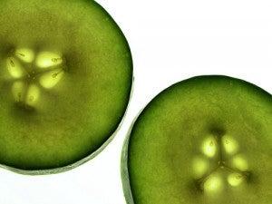 pepino elimina toxinas