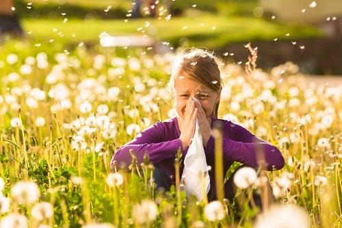 Saiba mais sobre as alergias