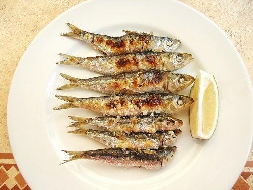 Salmão e sardinha alimentos ricos em cálcio