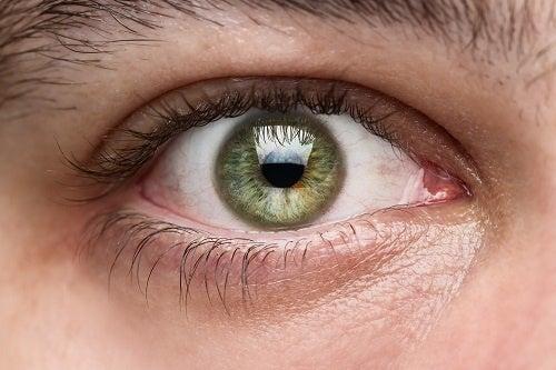 Cuide melhor da sua visão