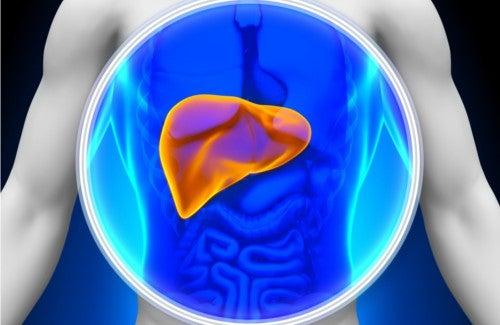 8 alimentos para depurar o fígado naturalmente
