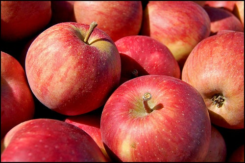 alimentação adequada evita a fibromialgia