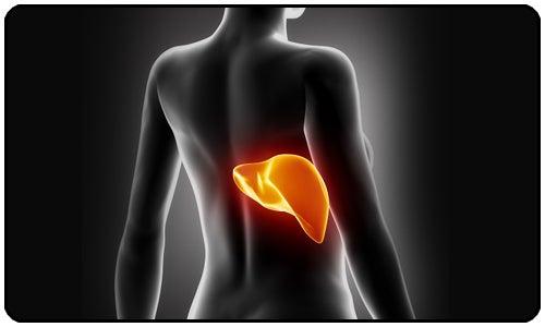 7 sinais de um fígado intoxicado