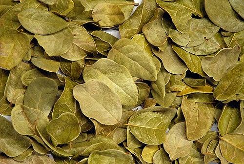 Alimentos e ervas para desintoxicar o fígado