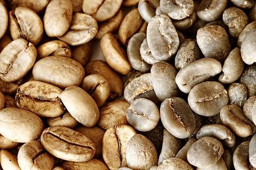 Conheça a dieta do café verde