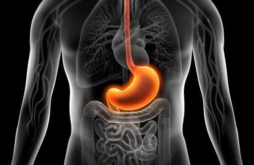 10 dicas naturais para curar a gastrite aguda