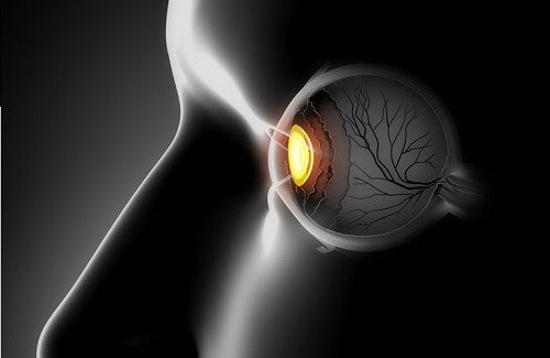 Vitaminas saudáveis que melhoram a visão