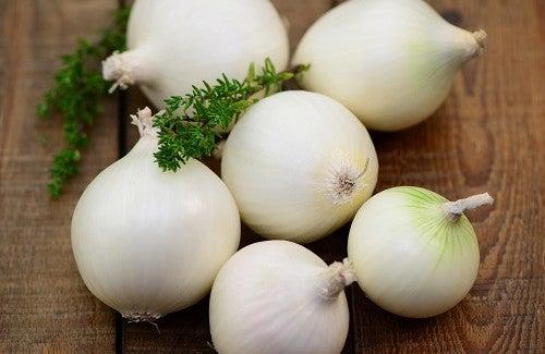 Os benefícios da cebola