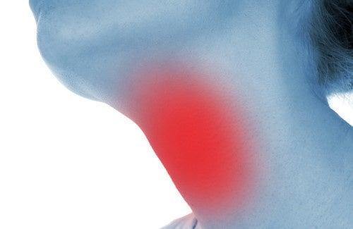 Ervas medicinais adequadas na ajuda ao combate do hipotireoidismo