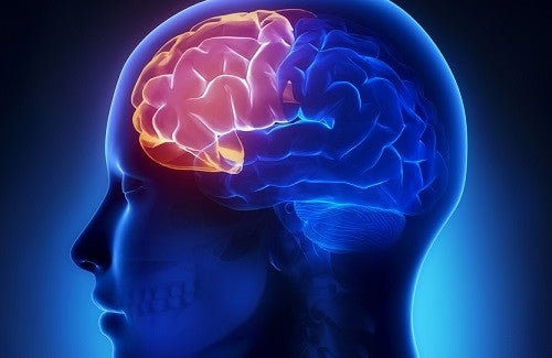 Cérebro durante o desequilíbrio hormonal