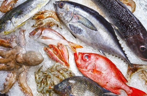 5 peixes que você deve evitar