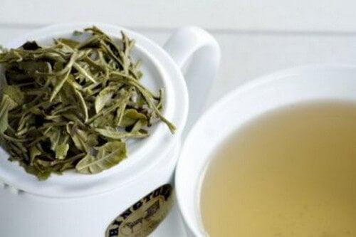 Dieta do chá branco para perder peso