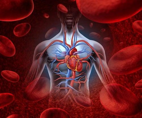 Atenção ao execesso de ferro no organismo