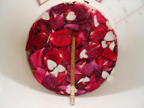 rosa-Jacob-Whittaker