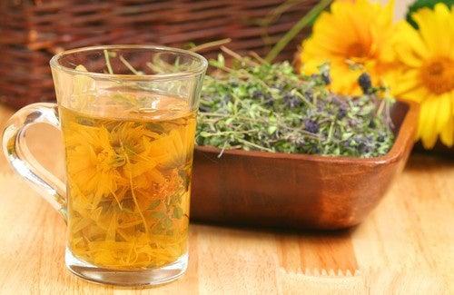 Infusão caseira para depurar o organismo: conheça 4 receitas