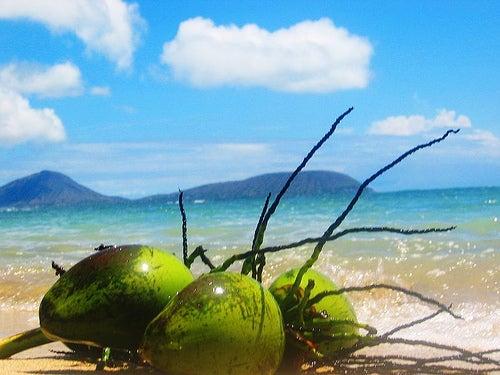 Benefícios da água de coco para saúde