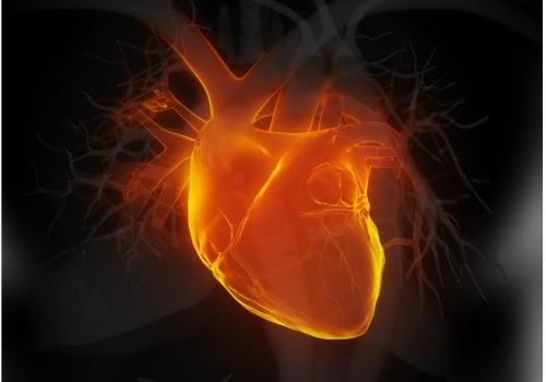 Os sintomas de um infarto