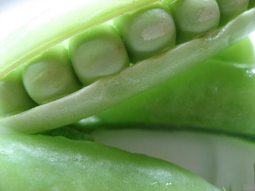 Ervilha são excelentes leguminosas