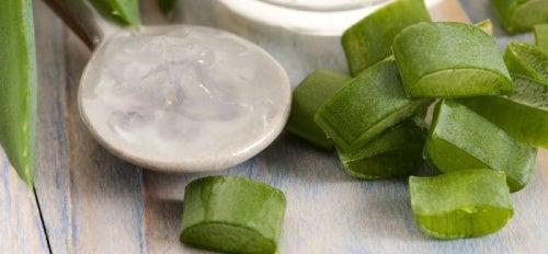 Aprenda a receita do sabonete natural com babosa e mel