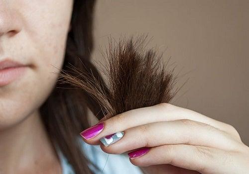 Dicas e tratamentos para os cabelos