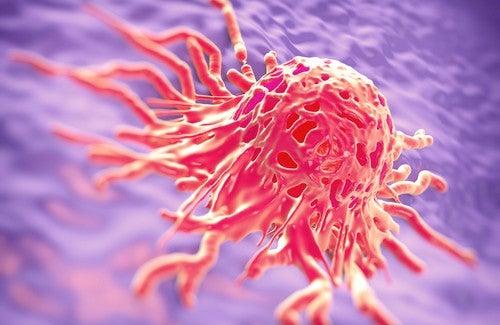 Ervas medicinais usadas na luta contra o câncer