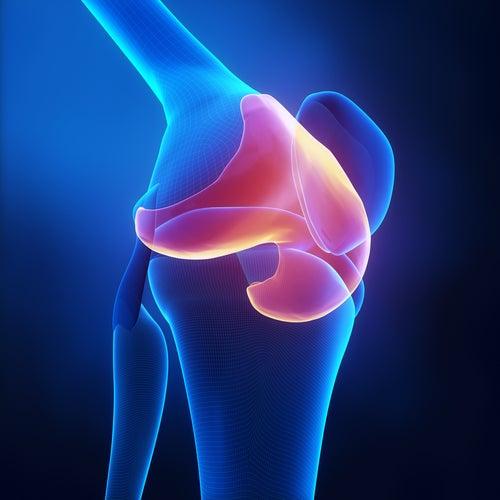 Dor nas cartilagens