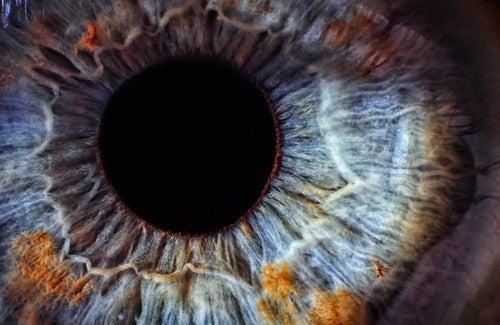 Como conhecer nosso estado de saúde através de nossos olhos