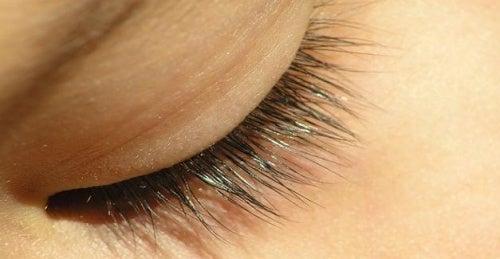 Como deixar seus cílios mais bonitos e saudáveis?