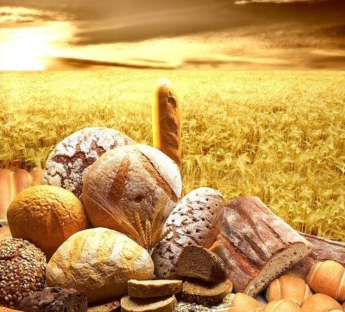 Pães de cereais integrais para desintoxicar o organismo