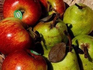 pera-manzana-Leonard-John-Matthews