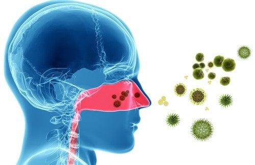 Remédios naturais para as alergias nasais