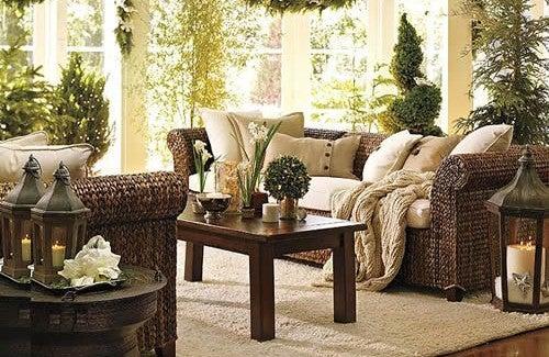 Plantas que ajudam a purificar sua casa