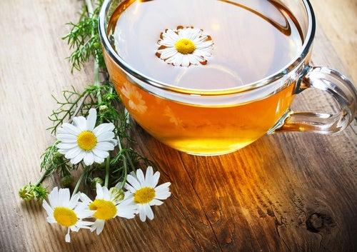 Chá pára tratar parasitas intestinais