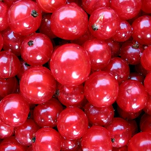 Frutas vermelhas antienvelhecimento