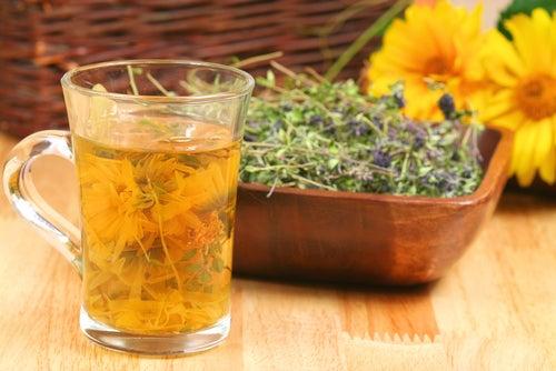 Chá para curar o intestino