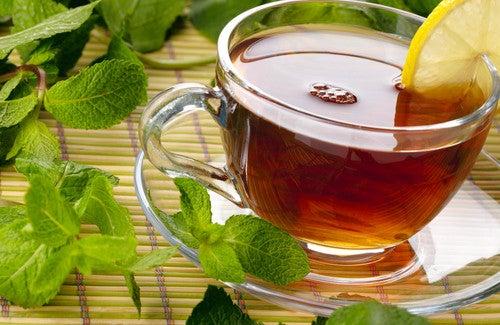 Plantas medicinais para curar o intestino