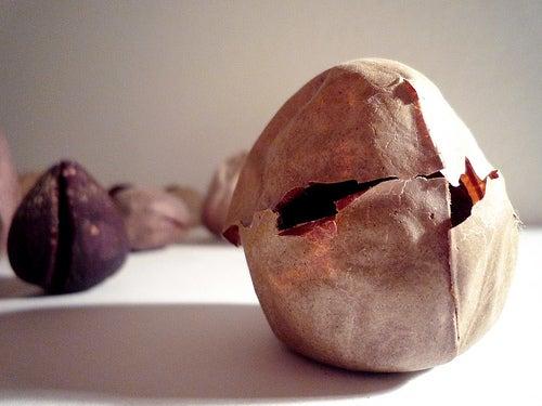 As propriedades que a semente do abacate tem