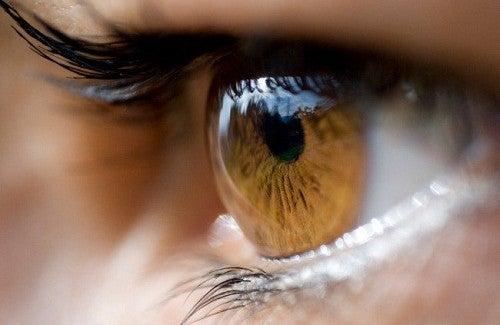 O que a cor de nossos olhos podem indicar sobre a nossa saúde?