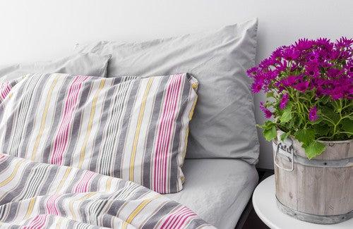 Como fazer de seu quarto um ambiente saudável?