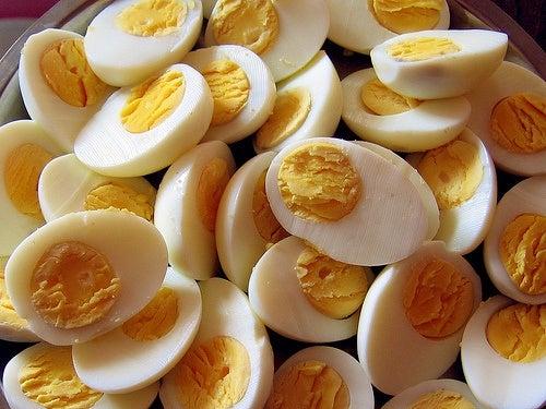 huevo-RMT