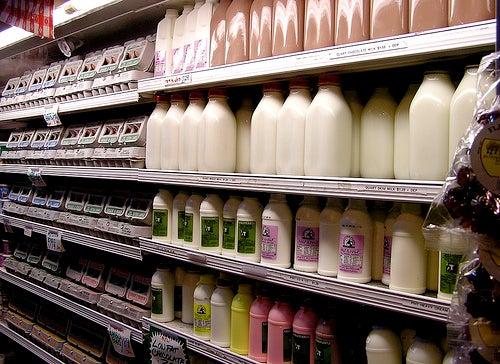 Lácteos em excesso podem irritar o intestino