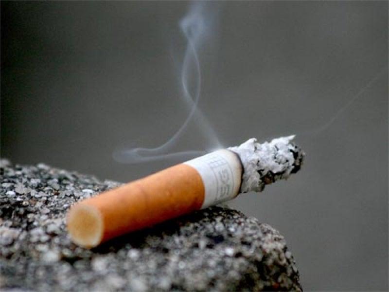 O uso de nicotina pode afetar a inteligência