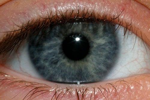 olhos-azuis-Jenn-Durfey