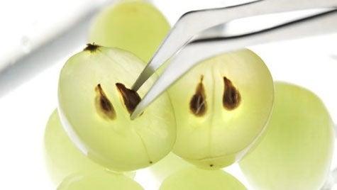 óleo de sementes de uva para cicatrizes