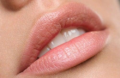 Os melhores remédios naturais para tratar os lábios secos